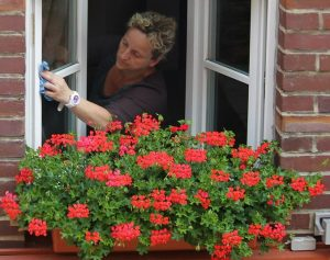 house cleaning tips : cleaning window
